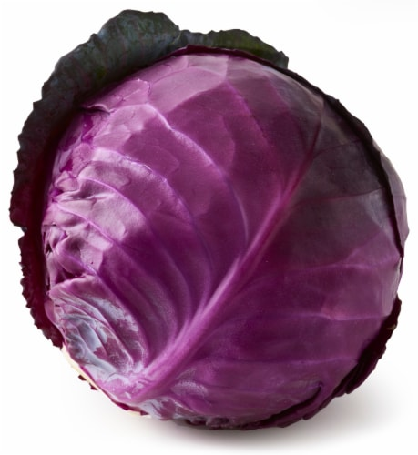 Red Cabbage Perspective: front