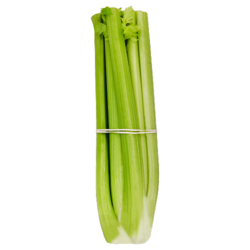 Celery Perspective: front