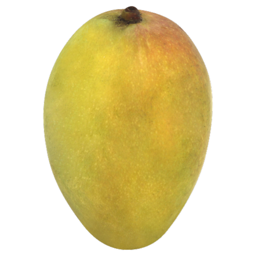 Green Mango Perspective: front