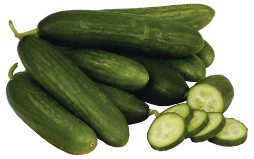 Persian Cucumber Perspective: front