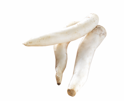 Daikon Perspective: front