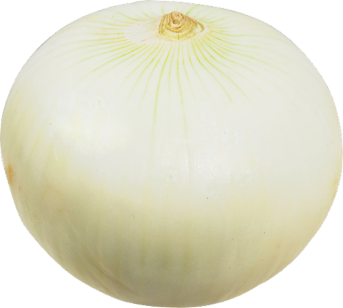 Onions - White - Peeled Perspective: front