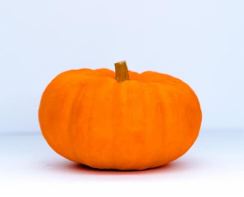 Mini Pumpkins (Up to 1 lb) Perspective: front