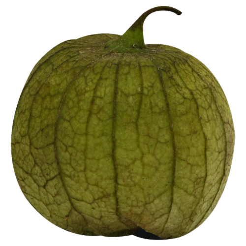 Tomatillo Perspective: front