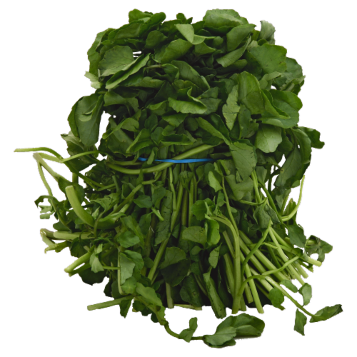Watercress Perspective: front