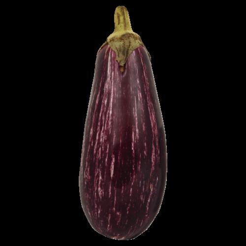 Eggplant Pasta Para Duritos Pinwheel Perspective: front