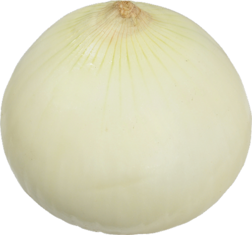 Yellow Peeled Onions Perspective: front