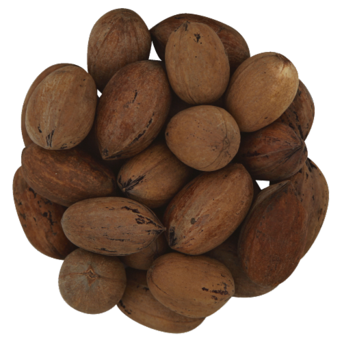 Pecans - In-Shell - Bulk Perspective: front