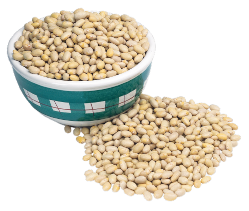 Peruvian Beans Perspective: front