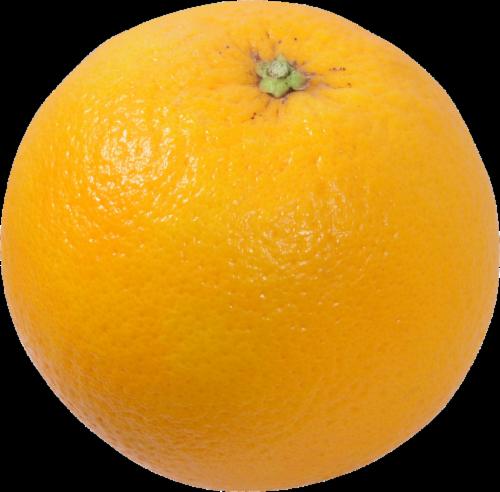 Organic Orange Perspective: front