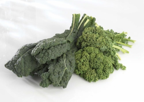 Organic Green Lacinato Kale Perspective: front