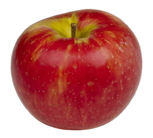 Organic Honeycrisp Apples Perspective: front