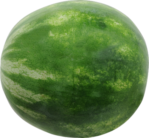 Organic Red Seedless Watermelon Perspective: front