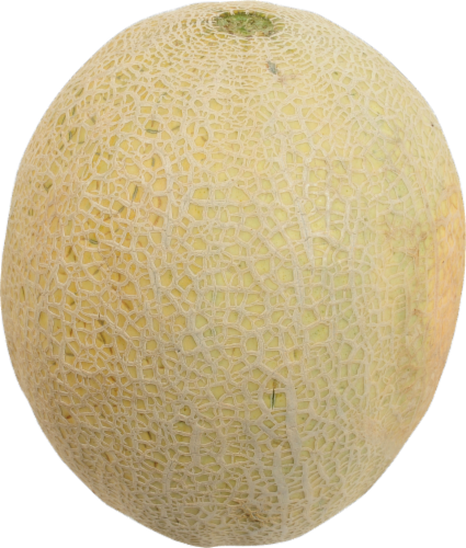 Organic Cantaloupe Perspective: front