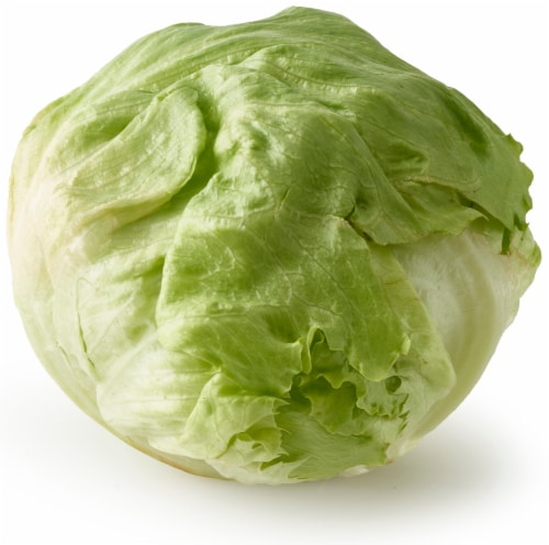 Organic Iceberg Lettuce Perspective: front
