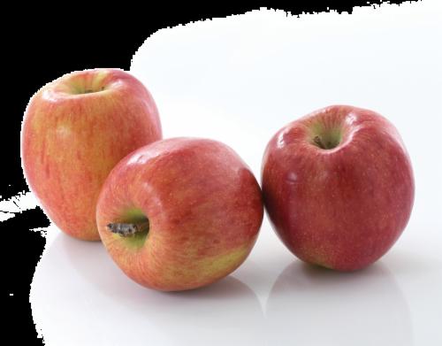 Organic - Apple - Braeburn Perspective: front
