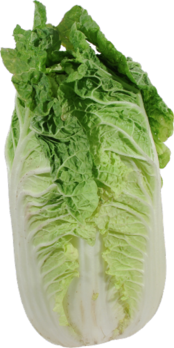 Organic Napa Cabbage Perspective: front