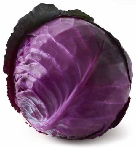 Organic Red Cabbage Perspective: front