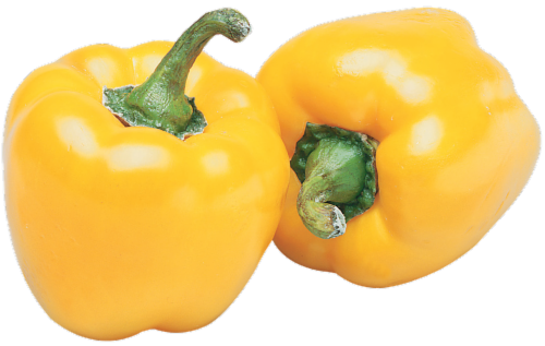 Organic Yellow Bell Pepper Perspective: front
