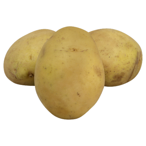 Yellow Organic Potatoes Perspective: front