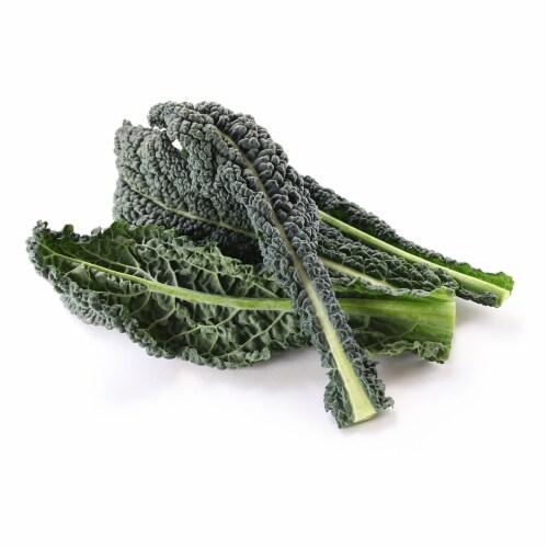 Organic Lacinato Kale Perspective: front