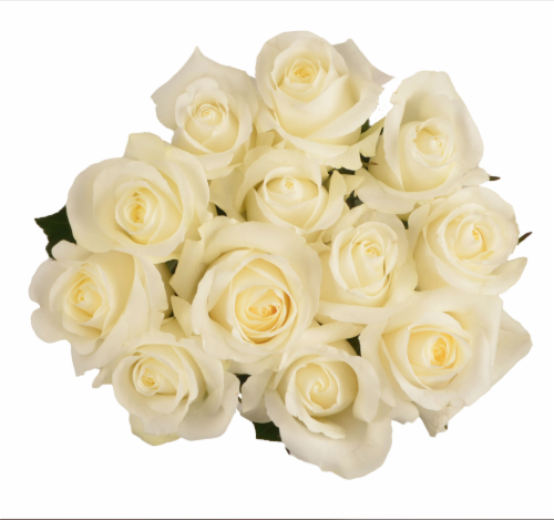 BLOOM HAUS White Dozen Rose Bouquet Perspective: front