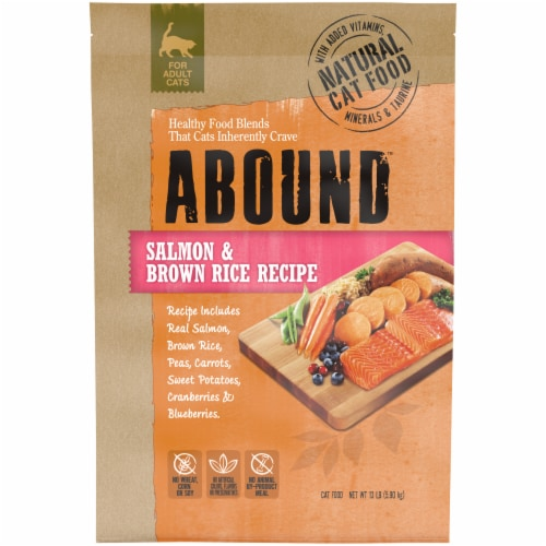 Abound™ Salmon & Brown Rice Recipe Adult Dry Cat Food Perspective: front