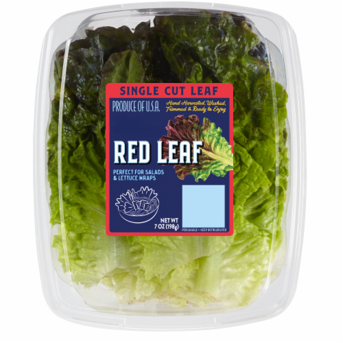 Kroger® Single Cut Red Leaf Lettuce Perspective: front