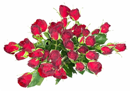 Bloom Haus Delight Red Rose Bouquet Perspective: front