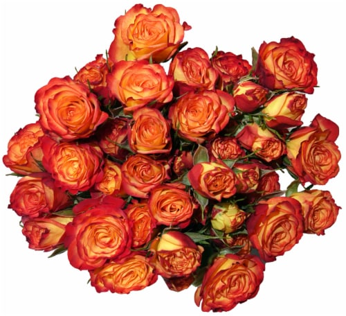 Bloom Haus Delight Orange Rose Bouquet Perspective: front