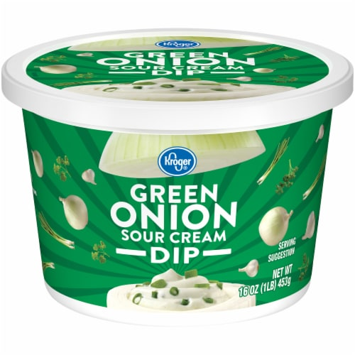 Kroger® Green Onion Sour Cream Dip Perspective: front