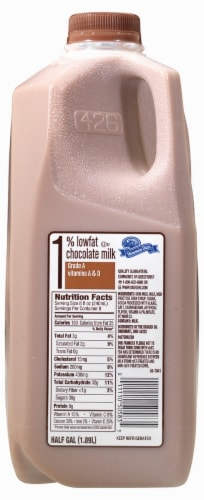 Mountain Dairy Low Fat Chocolate Milk Perspective: front