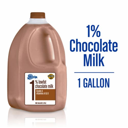 Mountain Dairy™ Chocolate Milk Perspective: front