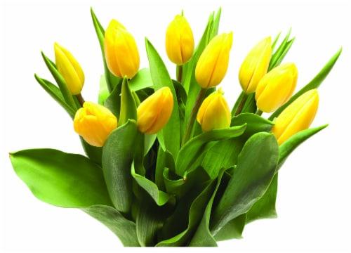 BLOOM HAUS Tulips Perspective: front