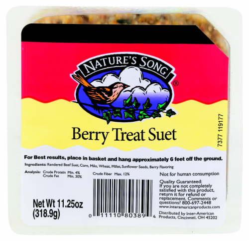 Nature's Song® Berry Treat Suet Perspective: front