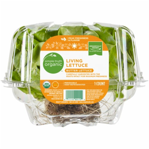 Simple Truth Organic™ Living Butter Lettuce Perspective: front