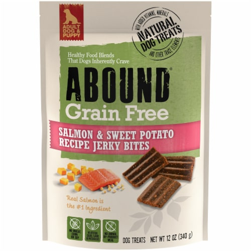 ABOUND™ Grain Free Salmon & Sweet Potato Recipe Jerky Bites Dog Treats Perspective: front