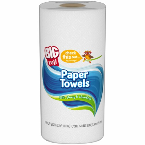 check this out...® Big Roll Paper Towel Perspective: front