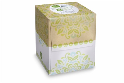 Simple Truth™ Facial Tissues Cube Perspective: front