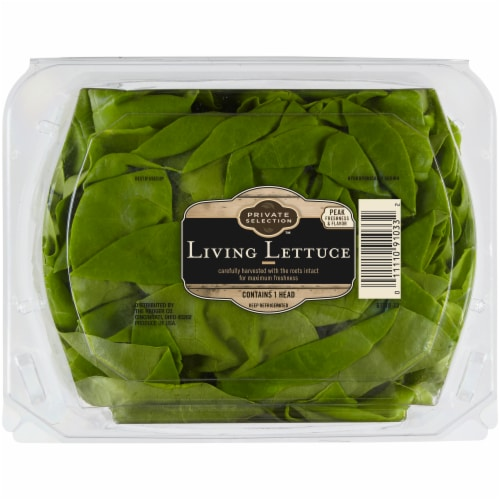 Private Selection™ Living Lettuce Perspective: front