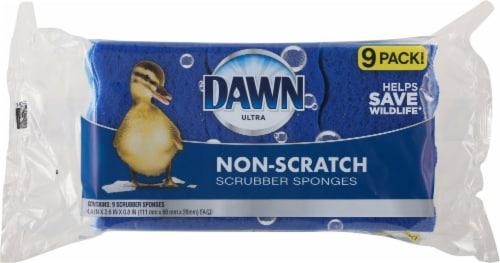 Dawn Non-Scratch Scrubber Sponges Perspective: front