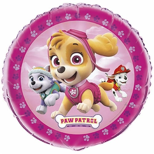Paw Patrol Girl Foil Balloon Perspective: front