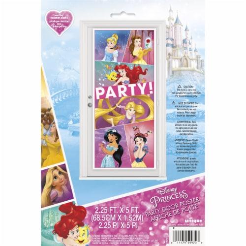 Disney Princess Dream Big Door Poster Perspective: front
