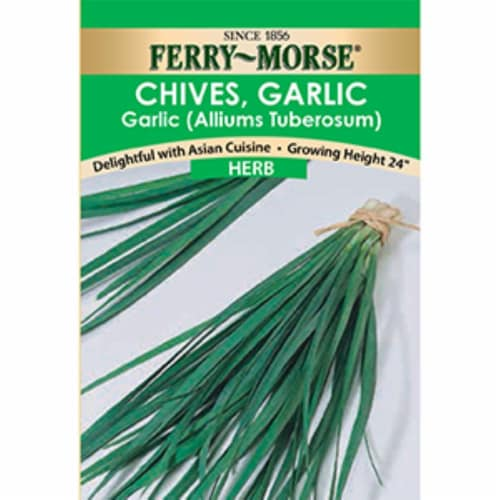 Ferry-Morse Chives Garlic Herb Seeds Perspective: front