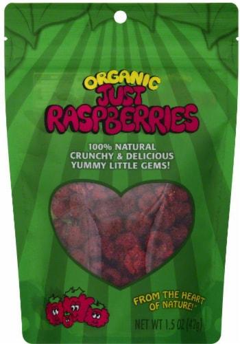 Karen's Naturals Organic Just Raspberries Perspective: front
