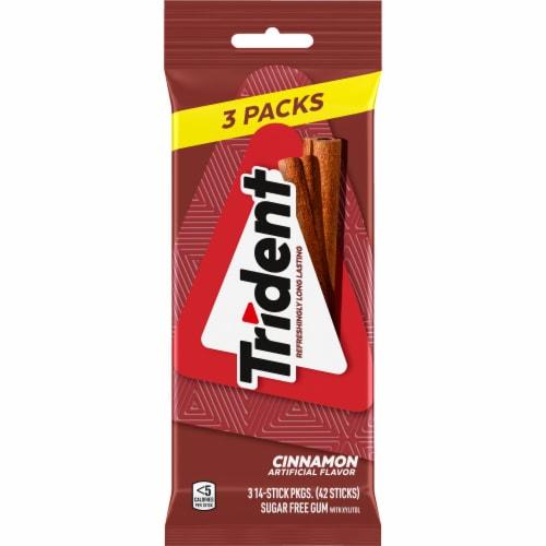 Trident Cinnamon Sugar Free Gum Perspective: front
