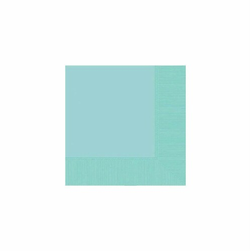 Amscan 52215.121 2-Ply Dinner Napkin Robins Egg Blue - Pack of 240 Perspective: front