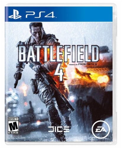 Battlefield 4 (PlayStation 4) Perspective: front