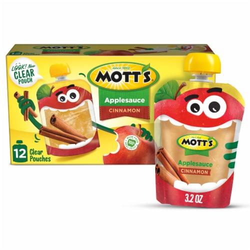 Mott's Cinnamon Applesauce Pouches Perspective: front
