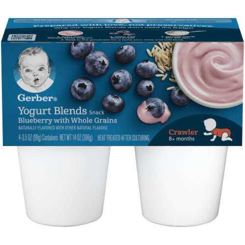 Gerber Crawler Blueberry with Whole Grains Yogurt Blends Snack Perspective: front